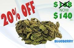 Blueberry Ounce Special-  20% OFF