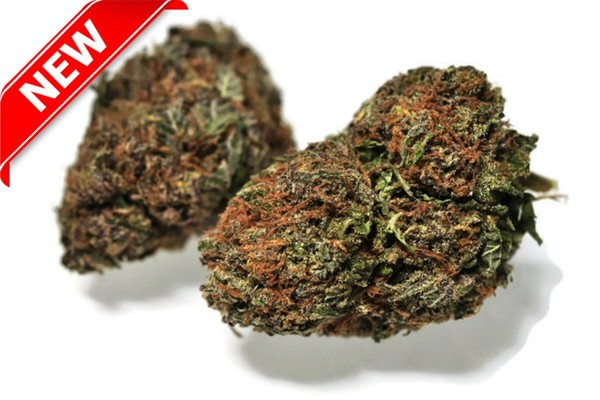 Buy Medical Cannabis Online in Canada